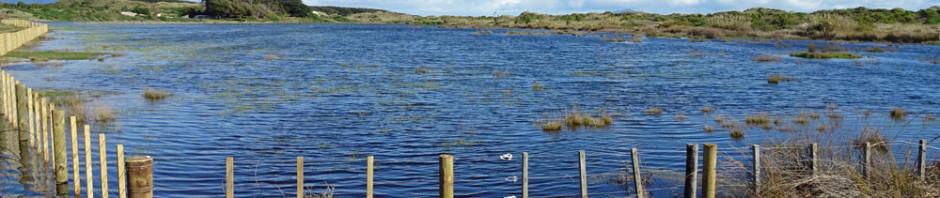 Lake Waikawa
